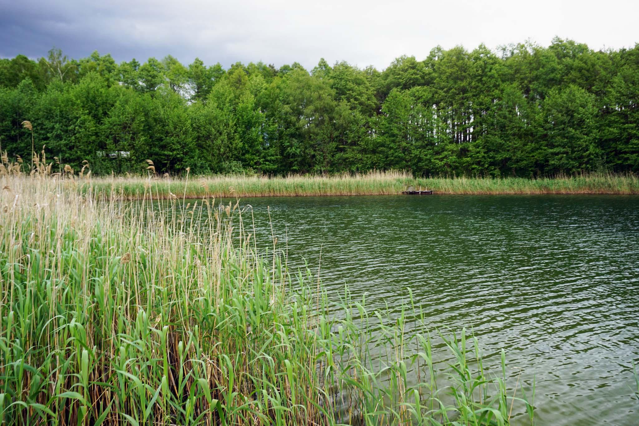polska-platforma-ochrony-wod-jeziora (1)