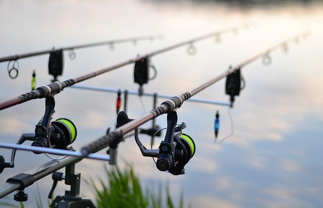 fishing-3302535_640